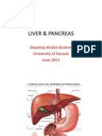 Liver & Pancreas