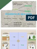 Realacion de Areas de La Plaza