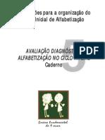 Caderno 5 - professor - Avaliação Diagnóstica_Alfabetização no Ciclo Inicial