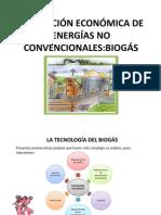 EVALUACIÓN ECONÓMICA DE ENERGÍAS NO CONVENCIONALES