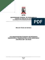 MarceloFalcao-MESTRADO-UFPE (1)