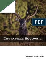 Tinutul Bucovinei
