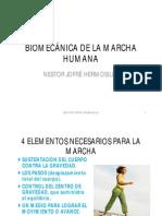 BiomecAnica de La Marcha Humana c3