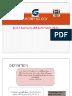 PKB3105 Morphology