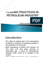 flaringpracticesinpetroleumindustry-100428192806-phpapp01