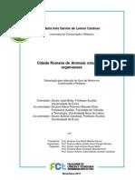 Santos de Lemos, Mª.I. Estudo das argamasas Ammaia. 2011