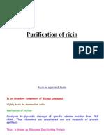 Ricin Purification Protocol
