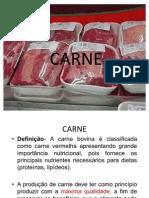Slides de Carne-2003