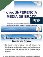 3. Circunferencia Media de Brazo