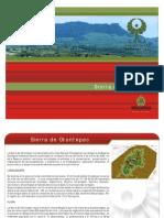 Area Natural Protegida Sierra de Otontepec