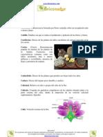 glosario huerto y jardín letra C