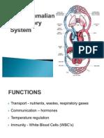 The Mammalian Circulatory System