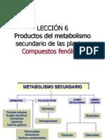 Leccin 6 EPD