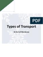 types of transport 12