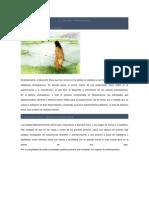 El Deporte Prehispanico.doc Cris 4