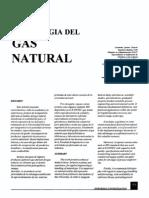 Tecnologia Del Gas Natural