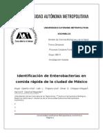 Identificacion de enterobacterias en comida rápida de la Ciudad de México
