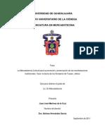 Capitulo III Sonajeros Tuxpan