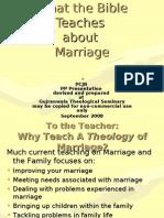 What Genesis Teaches - 1.0 Pattern 22Fr