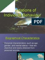 Foundations of Individual Behaviour