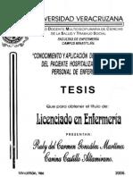 tesis-0293