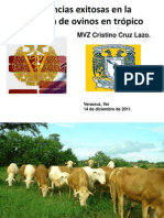 Experiencias exitosas en la producción de ovinos en el trópico