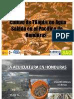 Cultivo de Tilapia en Ambiente Marino en El Golfo de Fonseca - Honduras (v Congreso Colombiano).