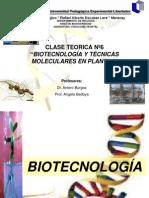 CLASE 6 Para 2011-1 Fisiologia Vegetal