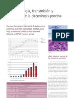 18 circovirosis