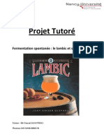projet_lambic