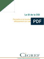 SI_DSI_2008