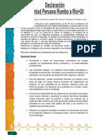 Declaración Juventud Peruana Rumbo a Rio + 20
