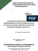 DISSERTACAO FABRICIO
