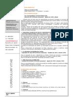 CV RICARDO JERÔNIMO -Atualizado