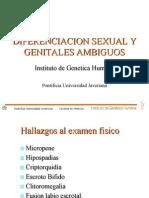 Diferenciacion Sexual y Genitales Ambiguos