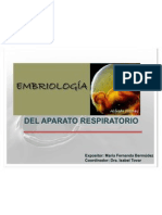 Embriologia mafe