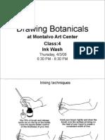 Drawing Botanicals, Class 4 :
