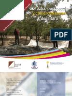 Ayacucho Manual de Cosecha y Post Cosecha