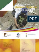 Tara Ayacucho - Manual de Instalacion de Plantones de Tara