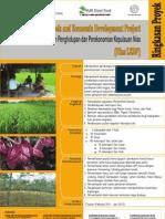 Leaflet Nias-LEDP Design