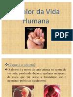Valor vida humana