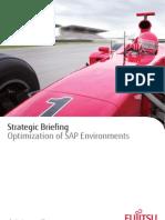 Strategic Briefing RZ BRO DI SAP Em En