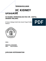 14558331 Laporan Pendahuluan Chronic Kidney Disease CKD