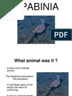 Opabinia Correction