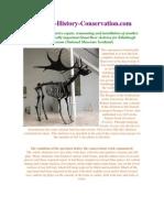 VVAA. Cleaning, Repair, Remounting and Installation Giant Deer Skeleton. 2011