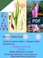 5.Colchicum