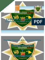 Principios Generales de La Intervencion Policial Terminado