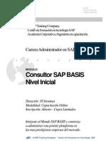 Temario Carrera Administrador Sap Basis Inicial