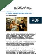 Propriedades Curativas Da Planta Sucupira - Farmácia - Saúde - Medicina Preventiva