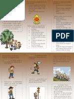 PDF Leis